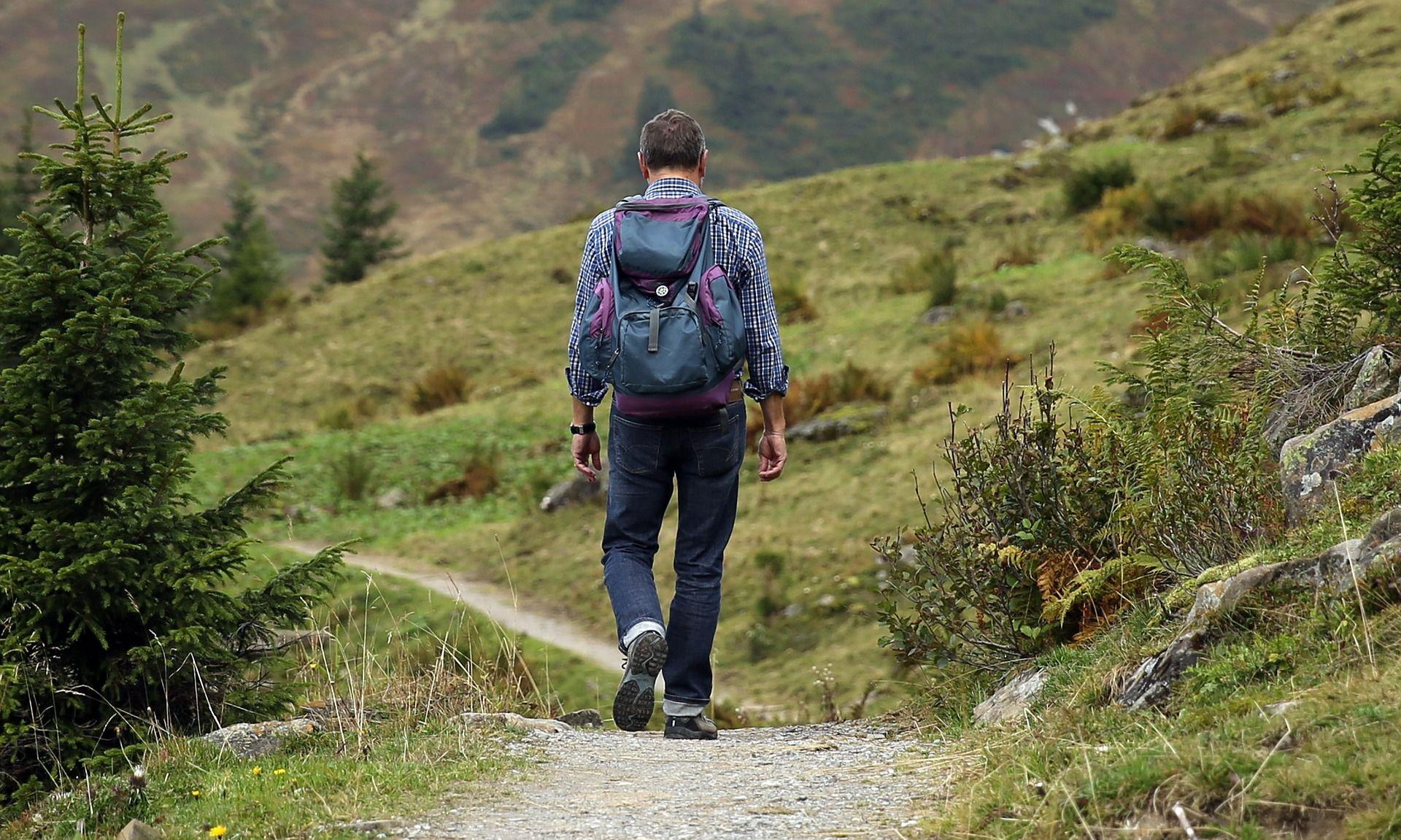 Man wandering down a path
